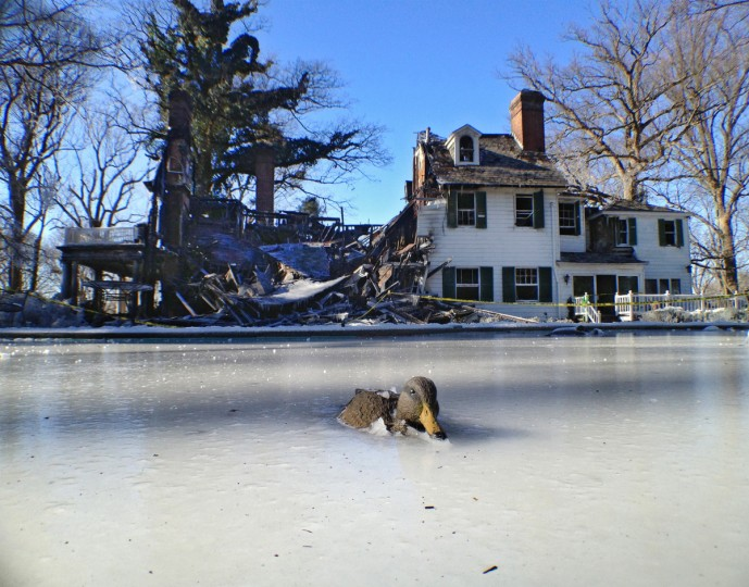 A frozen manmade pond holds one of a number of duck and goose decoys that sit as still outside the remains of a mansion the burned down during a 3-alarm fire. (Karl Merton Ferron/Baltimore Sun)