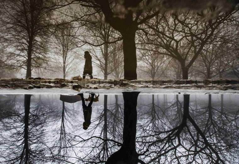 """A woman is reflected in a puddle from rain and melted ice as she walks her dog during winter in Toronto, January 11, 2014. The frigid air and """"polar vortex"""" that affected about 240 million people in the U.S. and southern Canada will depart during the second half of the week, and a far-reaching January thaw will begin, according to weather forecasts. The picture was taken by placing the camera upside down in the puddle. (REUTERS/Mark Blinch)"""