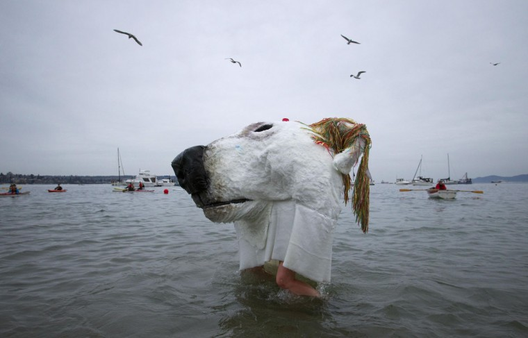 Two people wear a polar bear costume while running into English Bay during the 94th annual New Year's Day Polar Bear Swim in Vancouver, British Columbia on January 1, 2014. (REUTERS/Ben Nelms)