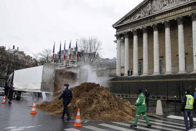 French police an municipal workers walk near a large pile of manure sits in front of the National Assembly in Paris, January 16, 2014. A man driving a lorry with a protest banner dumped several tonnes of manure in front of the National Assembly in central Paris before police stopped his protest action that targeted current President Francois Hollande, politicians in general, and the Fifth Republic. (REUTERS/Jacky Naegelen)