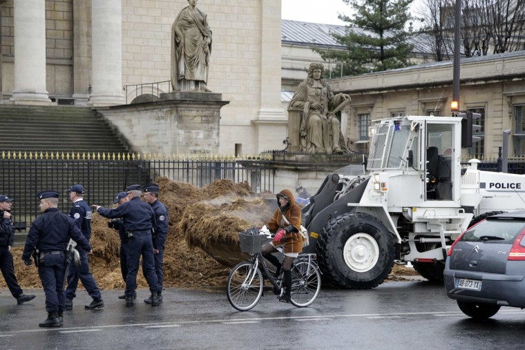 A woman rides a bicycle past French police as a large pile of manure is removed in front of the National Assembly in Paris, January 16, 2014. A man driving a lorry with a protest banner dumped several tonnes of manure in front of the National Assembly in central Paris before police stopped his protest action that targeted current President Francois Hollande, politicians in general, and the Fifth Republic. (REUTERS/Jacky Naegelen)
