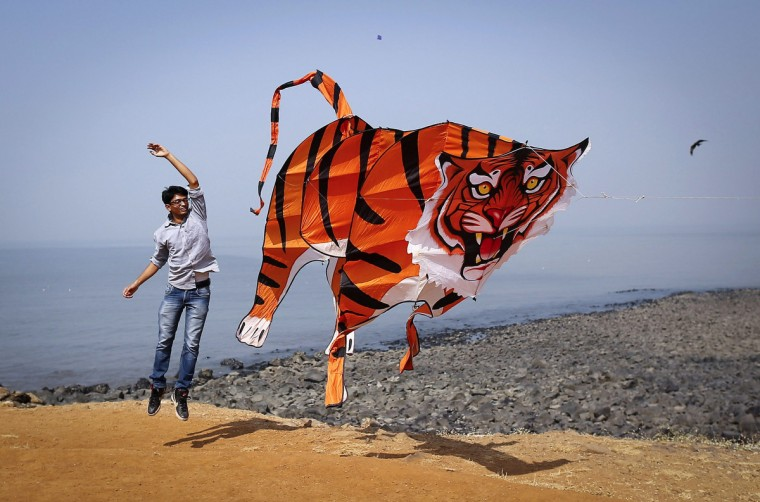 A participant flies a tiger shaped kite during the International Kite Festival in Mumbai. (Danish Siddiqui/Reuters)