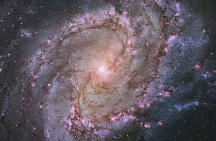 "The barred spiral galaxy M83, also known as the Southern Pinwheel, is seen in a NASA Hubble Space Telescope mosaic released January 9, 2014. The Hubble photograph captures thousands of star clusters, hundreds of thousands of individual stars, and ""ghosts"" of dead stars called supernova remnants. (REUTERS/NASA)"