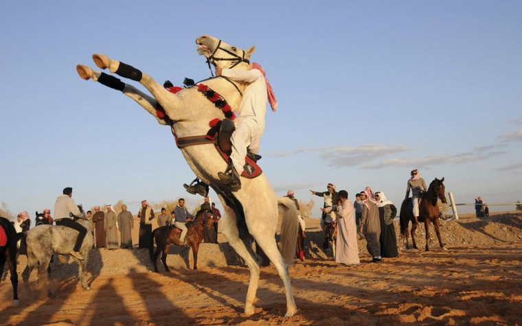 A Saudi man riding a horse makes his way to a rally in celebration of schoolchildren completing their first semester of school, near Tabuk city January 16, 2014. REUTERS/Mohamed Alhwaity
