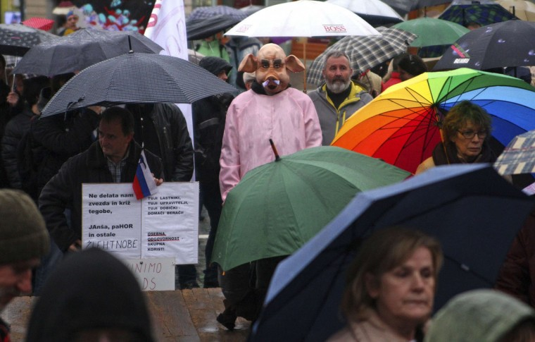 A man dressed as a pig stands in the rain among demonstrators during an anti-corruption protest in Ljubljana January 17, 2014. REUTERS/Srdjan Zivulovic