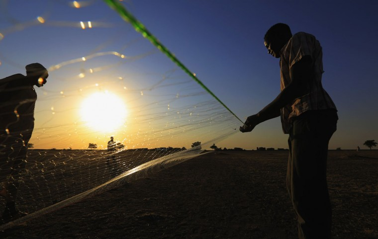 South Sudanese make a fishing net outside a shelter in al-Ghanaa village in the Jableen locality in Sudan's White Nile State, as refugees arrive from the South Sudanese war zones of Malakal and al-Rank via the Joda border, January 17, 2014. REUTERS/Mohamed Nureldin Abdallah