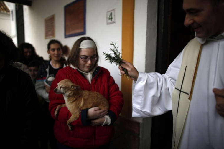 A priest (R) blesses a dog outside of San Anton church in Churriana, near Malaga, southern Spain, January 17, 2014. Pet owners bring their animals to be blessed every year on the day of San Anton, Spain's patron saint of animals. (REUTERS/Jon Nazca)
