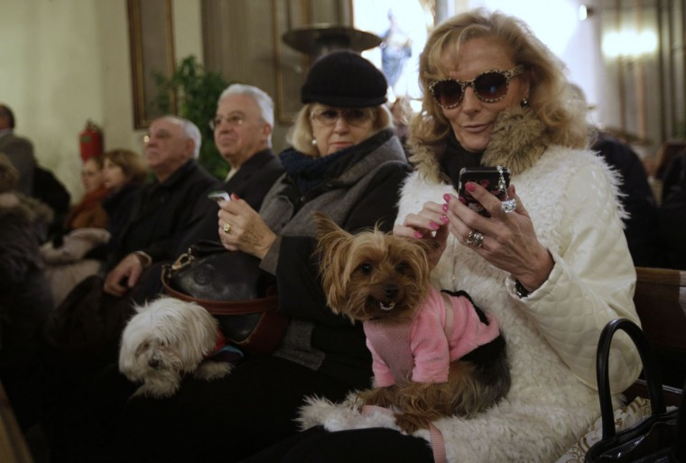 Dogs sit on their owners' laps as they take part in a mass at San Anton Church in Madrid January 17, 2014. Hundreds of pet owners bring their animals to be blessed every year on the day of San Anton, Spain's patron saint of animals. (REUTERS/Andrea Comas)