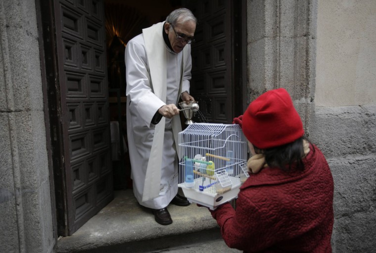 A priest blesses parakeets outside Madrid's San Anton Church January 17, 2014. Hundreds of pet owners bring their animals to be blessed every year on the day of San Anton, Spain's patron saint of animals. (REUTERS/Andrea Comas)