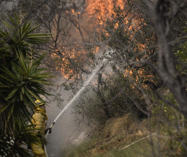 "Firefighters battle a fast-moving California wildfire, so-called the ""Colby Fire"", in the hills of Glendora January 16, 2014. The wildfire, started accidentally by three campers, roared out of control in foothills above Los Angeles on Thursday, destroying at least two homes and forcing more than 1,000 residents to flee, fire and law enforcement officials said. The wind-whipped blaze erupted before dawn in the Angeles National Forest north of Glendora, about 40 miles east of downtown Los Angeles in the foothills of the San Gabriel Mountains. (REUTERS/Gene Blevins)"