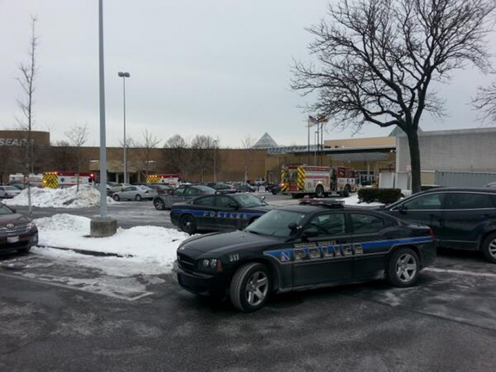 Police cars are seen at mall in Columbia, Maryland, January 25, 2014. Three people died in a shooting at a large shopping center outside of Baltimore, Maryland, on Saturday, and police said they were allowing shoppers to leave the mall after determining there was no longer a threat. (REUTERS/DCMediagroup/Robert Brune)