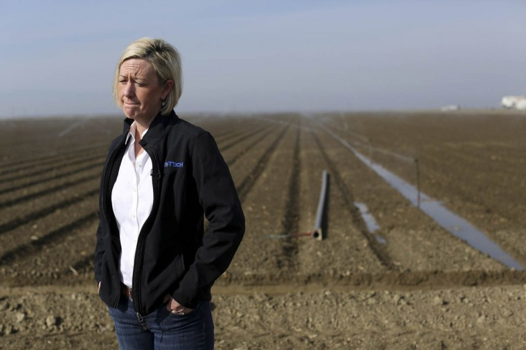 Farmer Sarah Woolf stands near a field of vegetables being irrigated on her farm near Cantua Creek, California February 14, 2014. President Barack Obama will pledge on Friday to speed federal assistance to help California recover from a crippling drought that is threatening the critical agriculture industry in the No. 1 farm state. (Robert Galbraith/Reuters photo)
