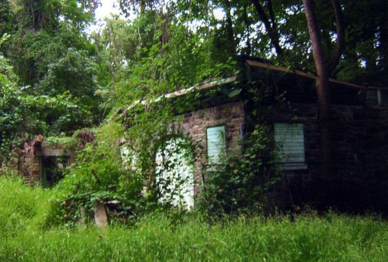"""""""Ghosts Live In These Woods."""" Druid is rich in the vine-covered romance of past park glories. Some Baltimoreans have claimed and feared real ghosts in there and declined to enter. (Ernie Imhoff/for The Baltimore Sun)"""
