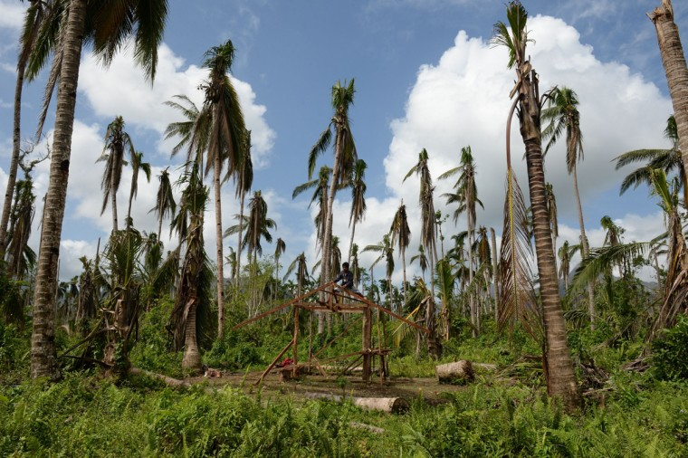 A resident-survivor of super Typhoon Haiyan builds his house next to destroyed coconut trees at a village in Jaro town, in Leyte province, central Philippines on February 17, 2014, as the Philippines marks 100 days since the devastating typhoon struck. The United Nations warned on February 15, that millions of survivors of the Philippines' deadliest typhoon were still without adequate shelter 100 days after the disaster, and millions of jobs were also destroyed or impaired after Haiyan tore down or damaged 33 million coconut trees, flooded fields with salt water, and swept away or wrecked 30,000 fishing vessels. (Ted Aljibe/AFP/Getty Images)