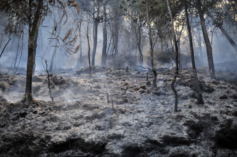 Burnt bushes smoke after a fire in Taman Bukit Melawati park in Kuala Lumpur on February 18, 2014. There were 312 bush fires reported nationwide on February 12 in just 24 hours during a dry spell this month in Malaysia, local media reported. (Mohd Rasfan/AFP/Getty Images)