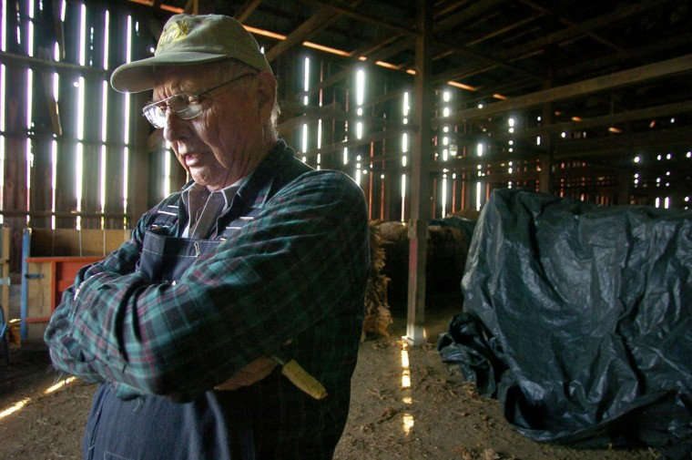 "Huntington, MD - 2006 -- Franklin G. Wood, Sr., 71, expressed pride in the quality of his ""Maryland 22"" tobacco crop, as he inspected the drying leaves in preparation for the tobacco auction. Wood's family had been growing tobacco in Calvert County for at least six generations, but by 2006 he was one of the last tobacco farmers in the state. (Amy Davis / Baltimore Sun)"
