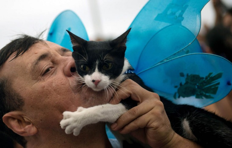 "A man kisses his cat during the animals' carnival parade ""Blocao"", at Copacabana in Rio de Janeiro on February 16 , 2014. (Christophe Simon/Getty Images)"