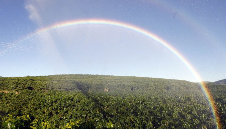A rainbow appears as coffee plants are irrigated in a farm in Santo Antonio do Jardim Feb. 7, 2014. (Paulo Whitaker/Reuters)
