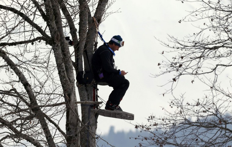 A U.S. coach sits on a makeshift seat on a tree during the downhill run of the men's alpine skiing super combined training session at the 2014 Sochi Winter Olympics at the Rosa Khutor Alpine Center February 11, 2014. (REUTERS/Stefano Rellandini)