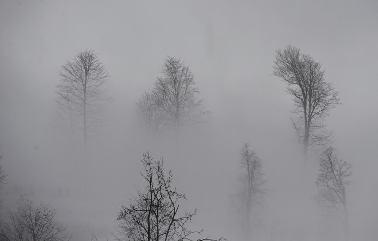 Fog shroud the trees near the freestyle skiing cross course at the 2014 Sochi Winter Olympic Games in Rosa Khutor February 21, 2014. (REUTERS/Dylan Martinez)