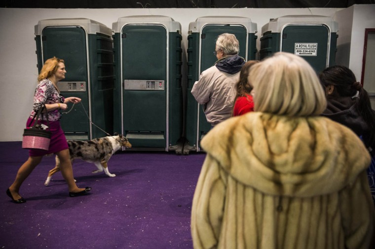 People wait in line for the bathroom during the 138th annual Westminster Dog Show at the Piers 92/94 on February 10, 2014 in New York City. The annual dog show showcases the best dogs from around world for the next two days in New York. (Andrew Burton/Getty Images)