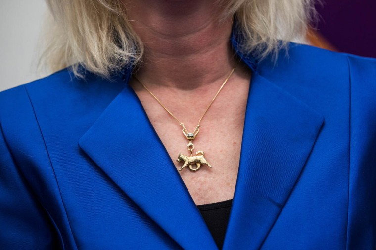 A woman wears a necklace of an Alaskan malamute during the Westminster Dog Show on February 11, 2014 in New York City. The annual dog show has been showcasing the best dogs from around world for the last two days in New York. (Andrew Burton/Getty Images)