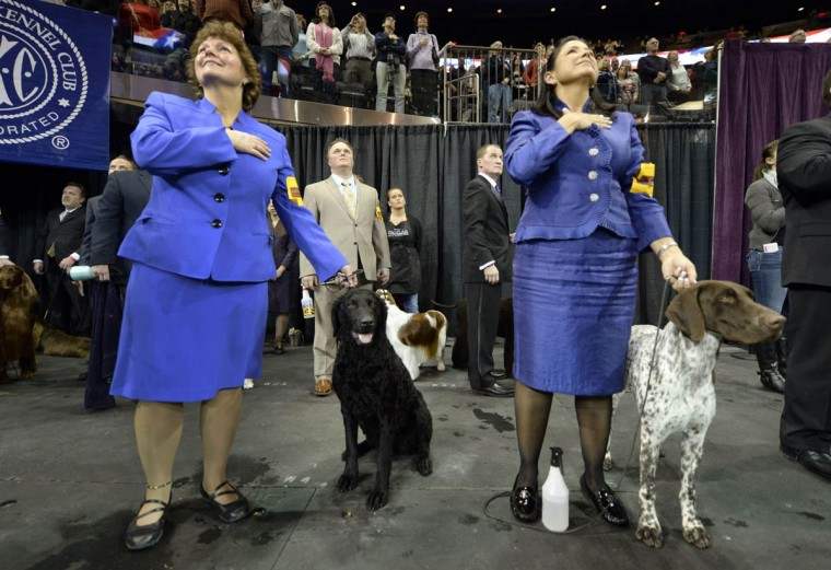 Handlers listen to the National Anthem with their dogs during the Sporting Group on the second day of competition of the 138th Annual Westminster Kennel Club Dog Show February 11, 2014 at Madison Square Garden in New York. The Westminster Kennel Club Dog Show is a two-day, all-breed benched show that takes place at both Pier 92 & 94 and at Madison Square Garden in New York City. (Timothy A. Clary/Getty Images)