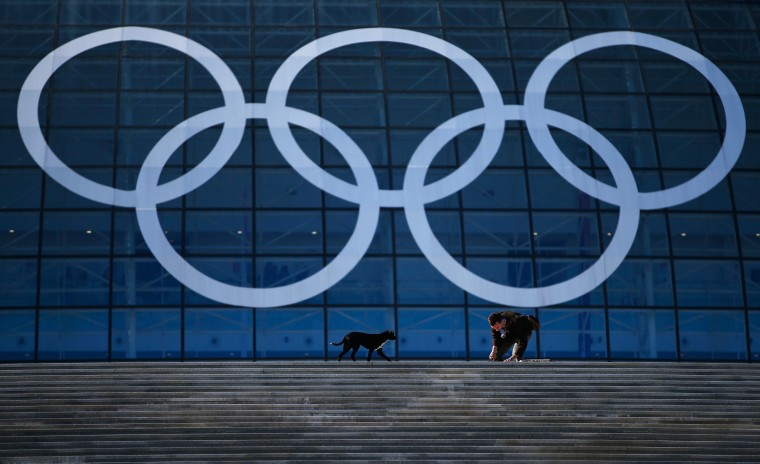 A stray dog approaches an Olympic worker in front of the Olympic rings ahead of the Sochi 2014 Winter Olympics at the Olympic Park on February 4, 2014 in Sochi, Russia. (Photo by Joe Scarnici/Getty Images)