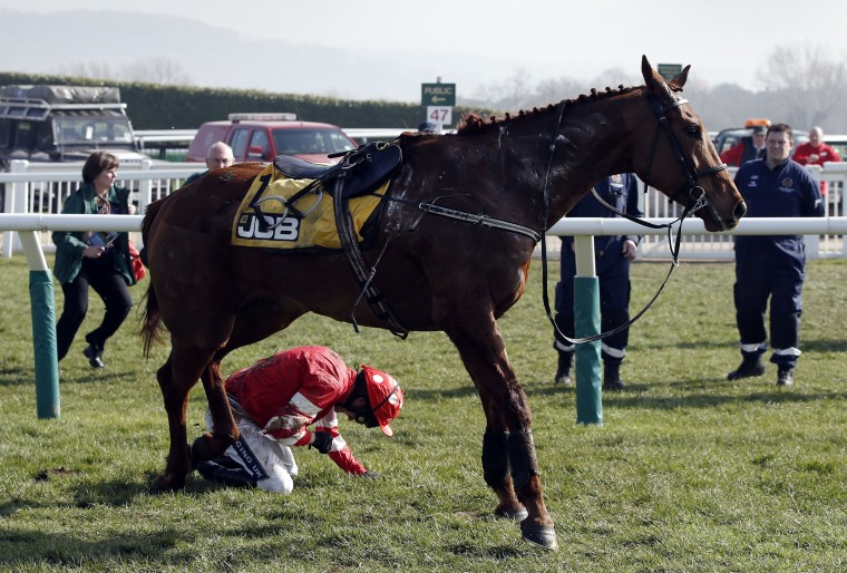 Jockey Ruby Walsh lies injured after falling from Abbyssial during the The JCB Triumph Hurdle race on the final day of the Cheltenham Festival horse racing meeting at Cheltenham Racecourse in Gloucestershire, South West England, on March 14, 2014. Leading Irish jockey Ruby Walsh's Cheltenham Festival campaign suffered a premature end when he was taken to hospital with a suspected broken arm after falling in The Triumph Hurdle. (Adrian Dennis/AFP/Getty Images)