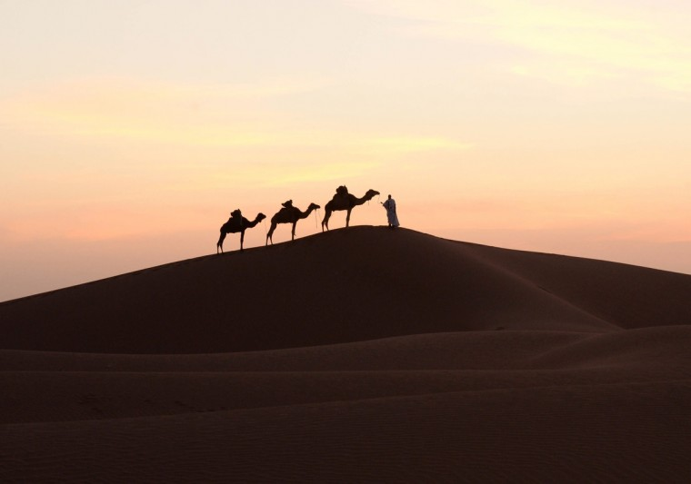 A man walks on a sand dune with his camels in Mhamid el-Ghizlane, in the Moroccan southern Sahara desert. (Fadel Senna/Getty Images)