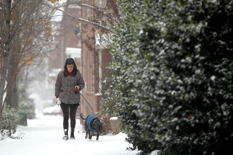 Adrienne Thomas of Remington walks her dog, Eve, on North Howard Street in Baltimore, MD on Sunday, December 8, 2013. (Jen Rynda/Baltimore Sun)