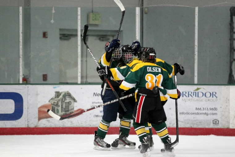 Atholton celebrates their goal in the second period of the ice hockey state semifinal against Wootton at The Gardens Ice House in Laurel. (Photo by Jen Rynda/BSMG)