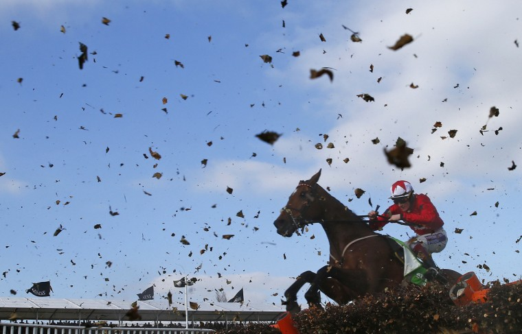 Sam Twiston-Davies on The New One jumps the final fence of the Champion Hurdle Challenge Trophy at the Cheltenham Festival horse racing meet in Gloucestershire, western England March 11, 2014. (Eddie Keogh/Reuters)
