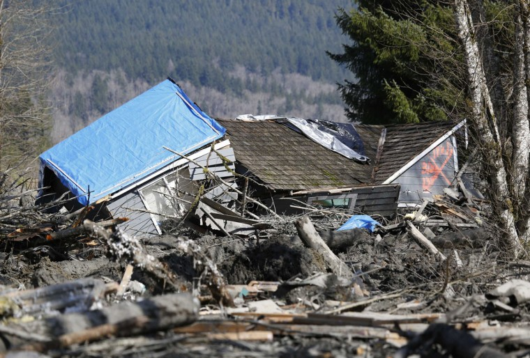 A emergency vehicle is parked as a landslide and debris block Highway 530 near Oso, Washington March 23, 2014. (Lindsey Wasson/Pool/Reuters)
