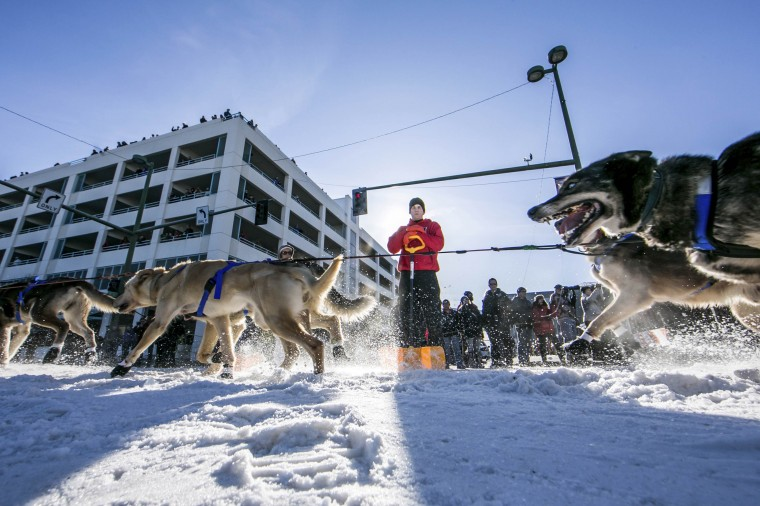 Katherine Keith's team charges down 4th Avenue at the ceremonial start to the Iditarod dog sled race in downtown Anchorage, Alaska, March 1, 2014. (REUTERS/Nathaniel Wilder)