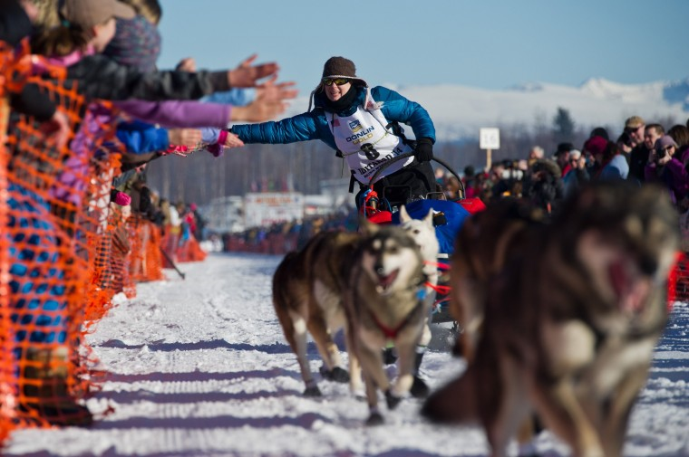 Musher Yvonne Dabakk greets fans of the Iditarod Trail Sled Dog Race in Willow Lake, Alaska, on Sunday, March 2, 2014. (Marc Lester/Anchorage Daily News/MCT)