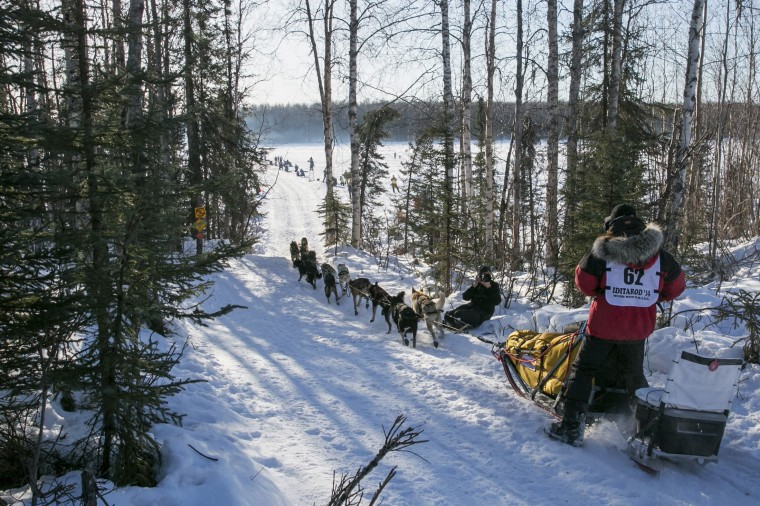 Musher Danny Seavey and team drop onto a lake on the way to Nome just after the official restart to the Iditarod dog sled race in Willow, Alaska, March 2, 2014. The nearly 1,000-mile (1,600-km) Iditarod Trail Sled Dog Race commemorates a 1925 rescue mission that carried diphtheria serum by sled-dog relay to the coastal community of Nome, which remains the final destination in this 42nd edition of the event. *(REUTERS/Nathaniel Wilder)
