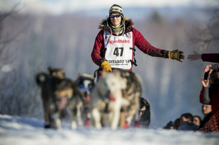 One of five mushers this year from Norway, Joar Leifseth Ulsom heads up the first hill out of the start chute during the official restart of the Iditarod dog sled race in Willow, Alaska, March 2, 2014. The nearly 1,000-mile (1,600-km) Iditarod Trail Sled Dog Race commemorates a 1925 rescue mission that carried diphtheria serum by sled-dog relay to the coastal community of Nome, which remains the final destination in this 42nd edition of the event. (REUTERS/Nathaniel Wilder)