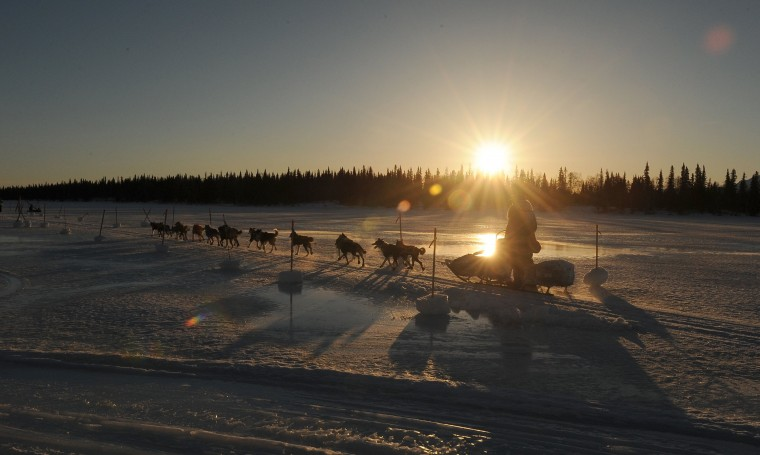Mike Santos drives his dog team into the Finger Lake checkpoint during the 2014 Iditarod Trail Sled Dog Race on Monday morning, March 3, 2014, in Alaska. (Bob Hallinen/Anchorage Daily News/MCT)