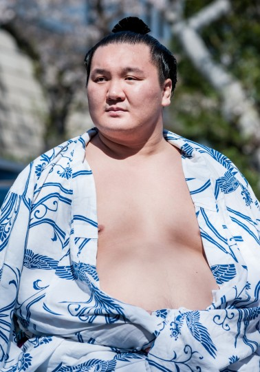 Professional Sumo wrestler Hakuho Sho during the Ceremonial Sumo Tournament or Honozumo at the Yasukuni Shrine on April 4, 2014 in Tokyo, Japan. (Keith Tsuji/Getty Images)