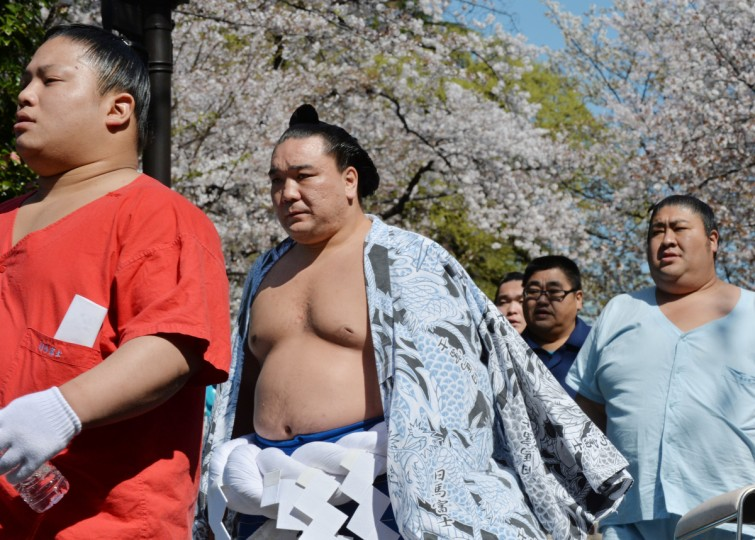 "Yokozuna Harumafuji (C) arrives at a ""honozumo"", a ceremonial one-day exhibition at Yasukuni shrine in Tokyo on April 4, 2014. (Kazuhiro Nogi/Getty images)"