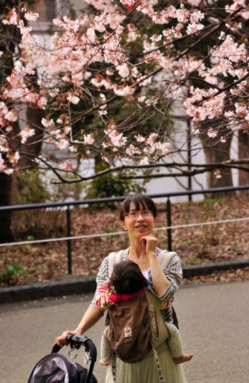 A woman looks at a cherry blossom tree at a park in Tokyo on March 25, 2014. Spring officially arrived in Tokyo on March 25 when Japan's weather agency announced the start of the cherry blossom season. (Photo by Yoshikazu Tsuno/AFP/Getty Images)