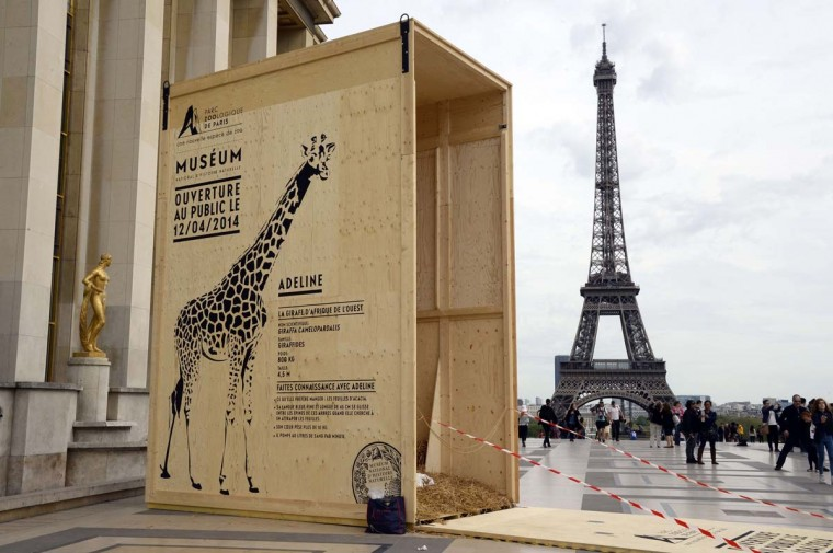 A picture shows the transport container of the giraffe of Paris' Vincennes zoo, displayed on the Trocadero Esplanade near the Eiffel Tower in Paris on April 7, 2014, to announce the re-opening of the zoo on April 12 after several years of renovation. (Bertrand Guay/AFP/Getty Images)