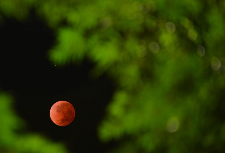 The moon is seen in the time around a total lunar eclipse on April 15, 2014 in Montevideo, Uruguay. (MARIANA SUAREZ/AFP/Getty Images)