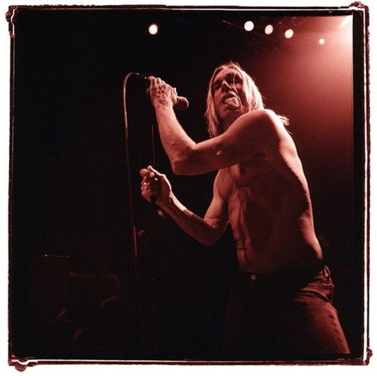 Iggy Pop, 2007, Washington D.C. (Photo by Sam Holden)