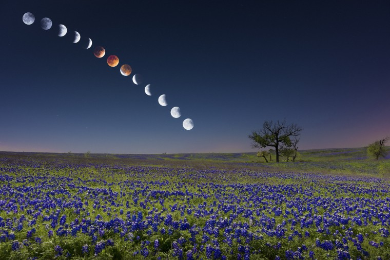 Lunar eclipse over Ennis, Texas, a Dallas subrub. Click to view the full size photo. (Credit: Mike Mezuel II)
