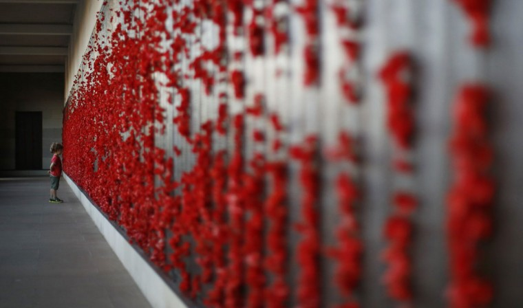 A boy looks at the World War One Wall of Remembrance lined with hundreds of red poppies on the eve of ANZAC Day at the Australian National War Memorial in Canberra April 24, 2014. On April 25, Australia and New Zealand will mark the 99th anniversary of the first major military action involving Australian and New Zealand forces during World War One. ANZAC is an acronym for Australia and New Zealand Army Corps. (REUTERS/Jason Reed )