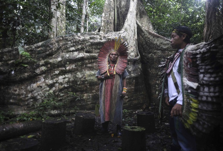 Spiritual leaders of the Huni Kui Indian tribe perform a ceremony for a sacred samauma (silk-cotton) tree outside the village of Novo Segredo along the Envira river in Brazil's northwestern Acre state, March 9, 2014. Many indigenous groups, including the Huni Kui, Ashaninka, and Madija, live in villages in the Brazilian rainforest near the border with Peru. (REUTERS/Lunae Parracho)