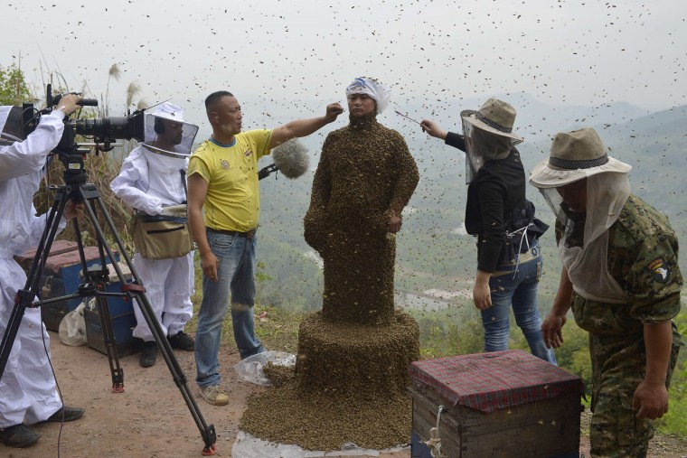 Assistants use burning incense and cigarettes to drive away from the face of She Ping, a 34-year-old beekeeper, during an attempt to cover She's body with bees, in Chongqing municipality April 9, 2014. He used queen bees to successfully attract more than 460,000 bees, weighing over 45 kg (99 lbs), within 40 minutes, local media reported. Picture taken April 9, 2014. (China Daily/REUTERS)