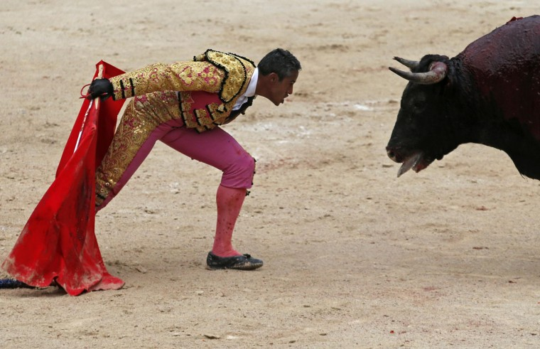 French bullfighter Mehdi Savalli taunts a bull in the arena during the traditional Easter Feria in Arles, Southern France, April 18, 2014. The four-day Easter Feria opens the French bullfight season in April and is held in the Roman-built arena. Several hundred thousand people visit the city of Arles in the Provence region with tens of thousands of aficionados who attend the bullfights. Picture taken April 18, 2014. (REUTERS/Jean-Paul Pelissier)